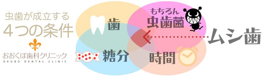 京都市左京区 おおくぼ歯科クリニック むし歯の条件図